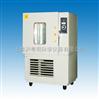 SM010A霉菌试验箱/上海实验仪器厂不锈钢霉菌试验箱