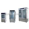 SPX-250生化培养箱