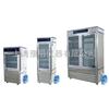 MJX–250S智能霉菌培养箱