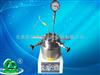 SLM10聚合反应釜