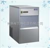 IM-25制冰机
