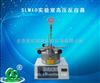 杭州促销SLM10实验室高压反应器