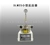 供应SLM25小型反应器