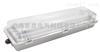 HRY91-Q18X2防爆防腐全塑LED荧光灯