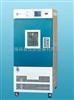 GDHS-2025C上海精宏 GDHS-2025C烘箱 高低温湿热试验箱