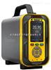 CJDZ600-HCL手提式氯化氢检测仪、0-10ppm、0-99.999%Vol