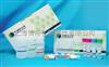 转基因植物Bt基因PCR检测试剂盒