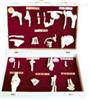 SMD024人体骨关节分类模型  教学模型
