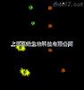 上海荧光定量PCR检测